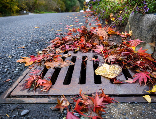 Items That Should Never Go Down The Storm Drains At Your Commercial Properties