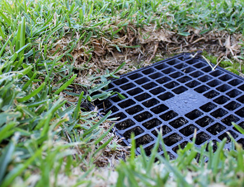 Do You Know How Important Catch Basins Are?